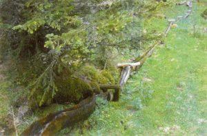 Koundlwool bei den Ellermahdern in Matsch